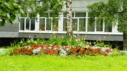 Ярославль в цвету — территория школы